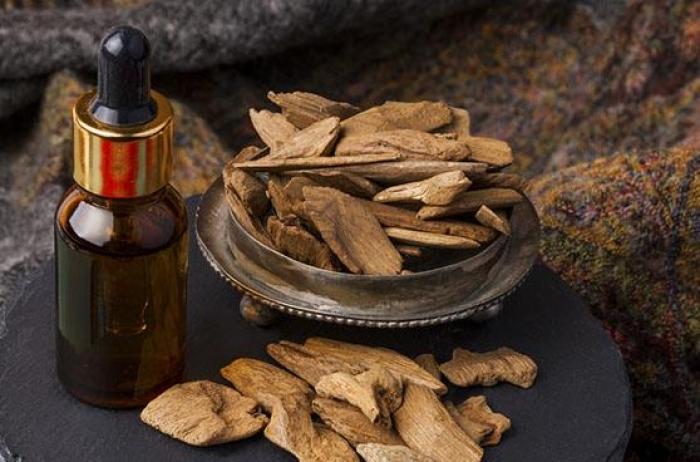 Top 10 lợi ích của tinh dầu gỗ trầm hương đối với cuộc sống