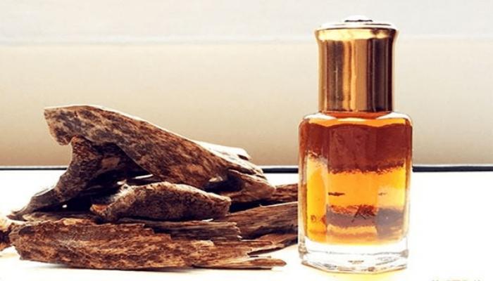 5 công dụng của hàng đầu tinh dầu trầm hương tự nhiên